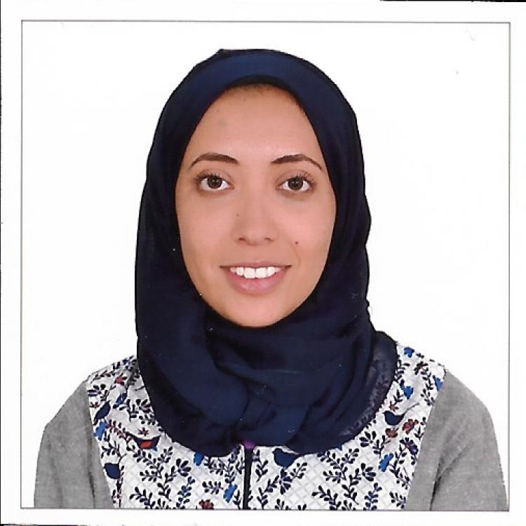 Alaa  Sabbahi
